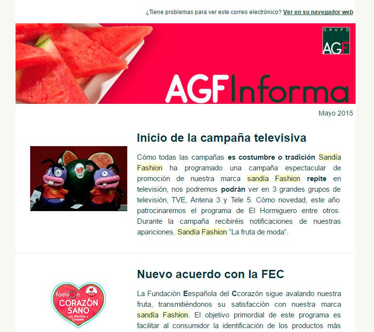 newsletter sandia fashion